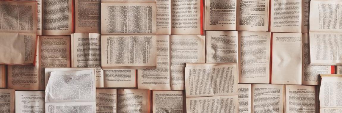 Buchtipps Studiejn Lesetipps